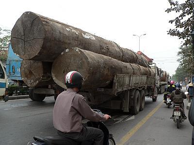 Luật giao thông đường bộ mới nhất